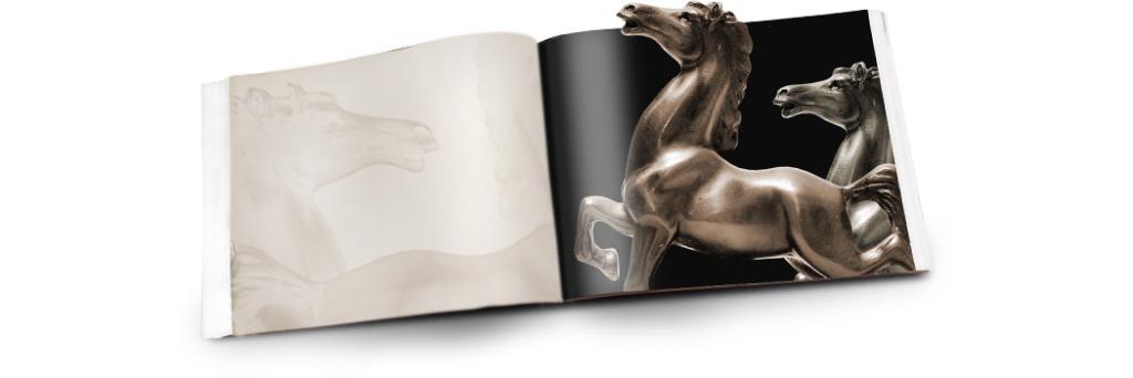illustrazione immagine libro